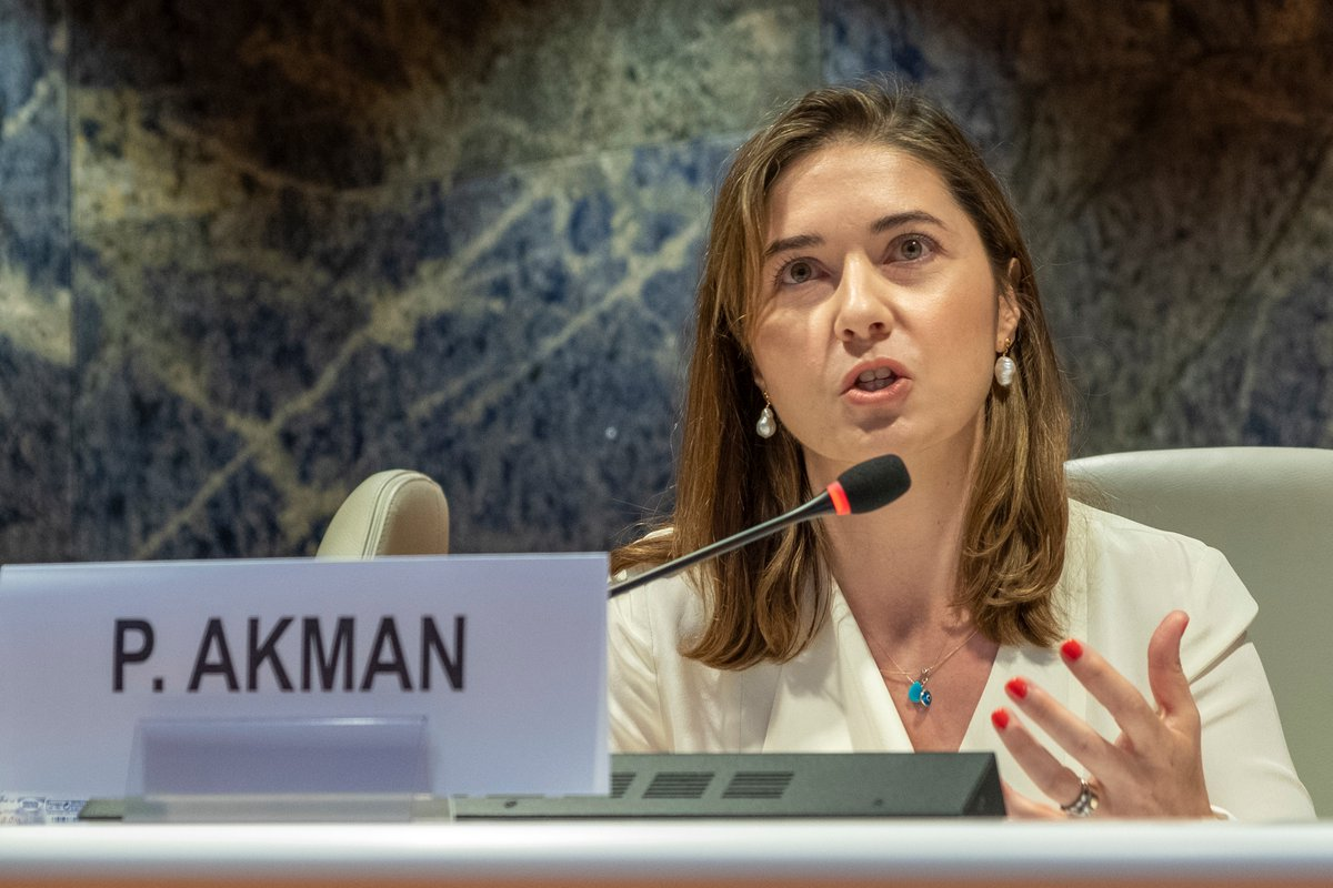 Professor Akman presents her research at the United Nations