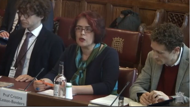 Professor Cristina Leston-Bandeira presents oral evidence in the House of Lords